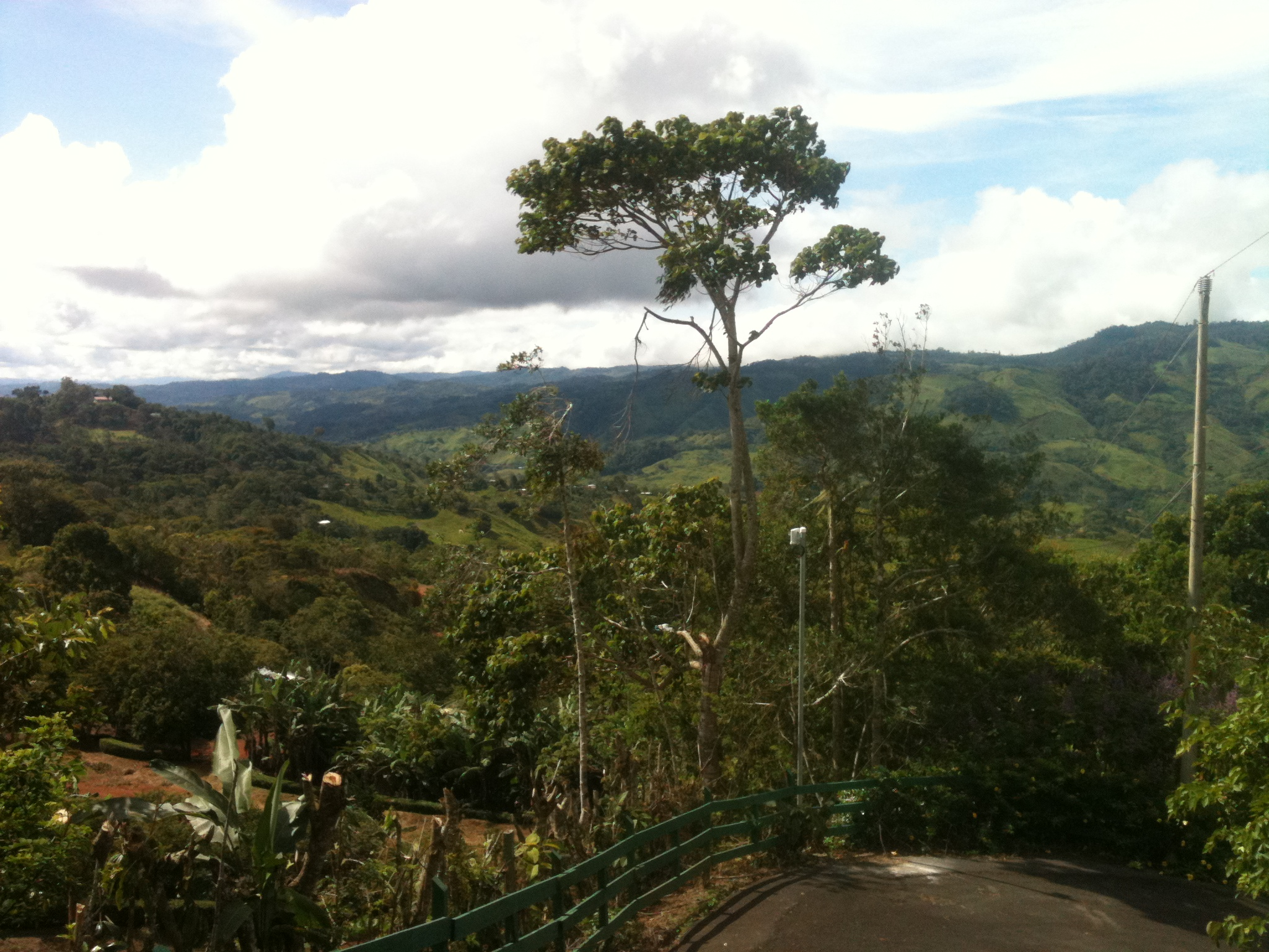 Costa Rican mountain view